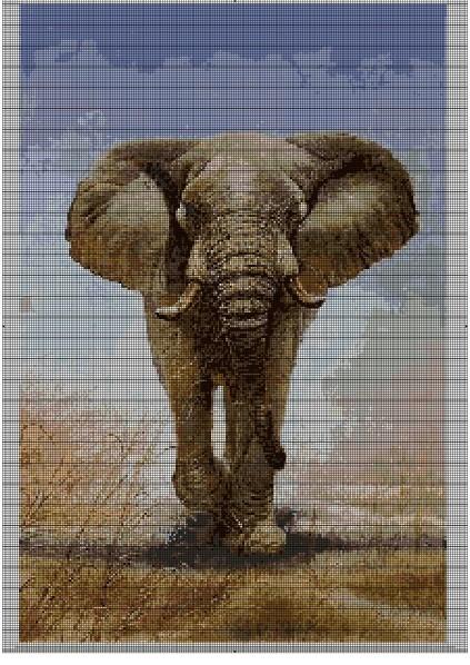 Grille gratuite point de croix elephant 11 - Photos d elephants gratuites ...