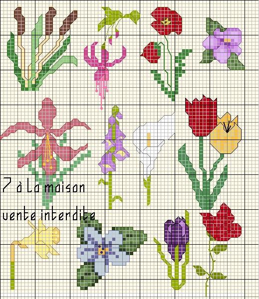 grille point de croix gratuite fleurs #7