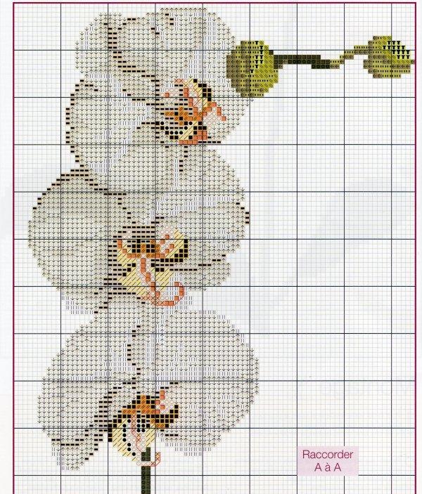 Mod le point de croix orchidee 11 - Apprendre le point de croix ...