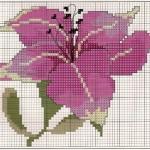 modèle point de croix fleur