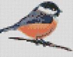 grille point de croix oiseaux