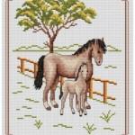 modèle point de croix gratuit cheval